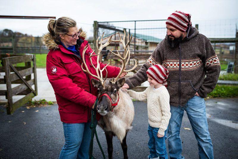 LF20210417-hoover2-reindeer.jpg