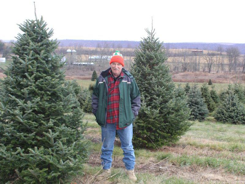 Finding The Perfect Vocation And The Perfect Tree The Heart Of The Farm Is The Family Lancasterfarming Com