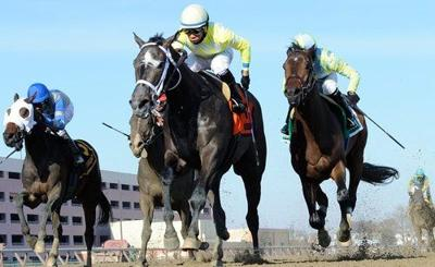 Derby Preps train makes stop in Gotham, for Gotham Stakes at Big A