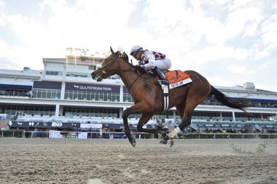 Gulfstream Park Florida Derby Horse Racing