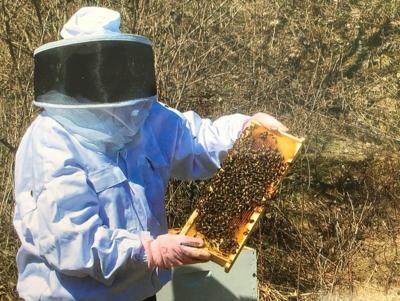 LF20210410-Carmichel-beekee.jpg