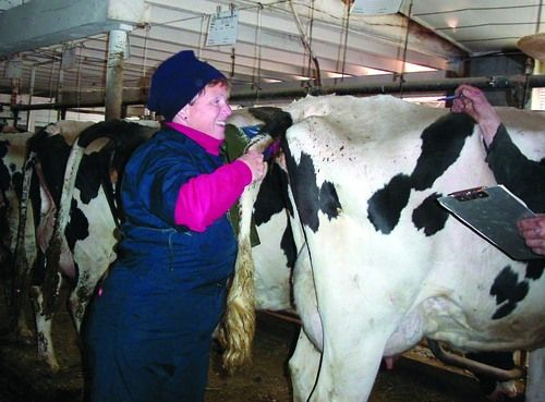 Cow Doctor On The 'Moove' | Main Edition | lancasterfarming com