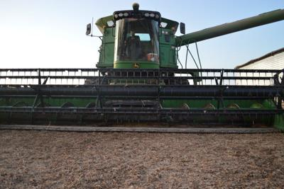 From 'Carpet Farming' to Custom Work, Young Farmer Chases Dream