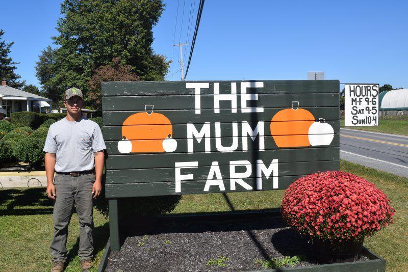 A-Mum-Farm-4.jpg