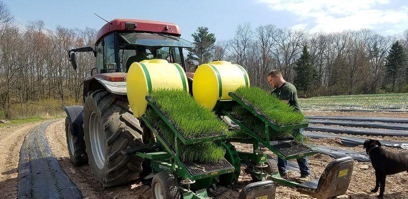 CLIM-seed-planting-1.jpg