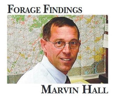 Forage-findings-marvin-hall