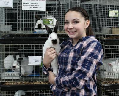 LF20200111-Rabbit-Champ-2.jpg