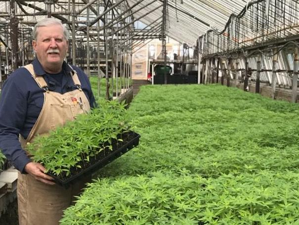 Altoona Greenhouse Grower is Ready to Meet the Demand of Hemp Permit Holders