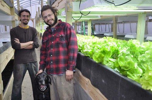 Farming Fish and Greens