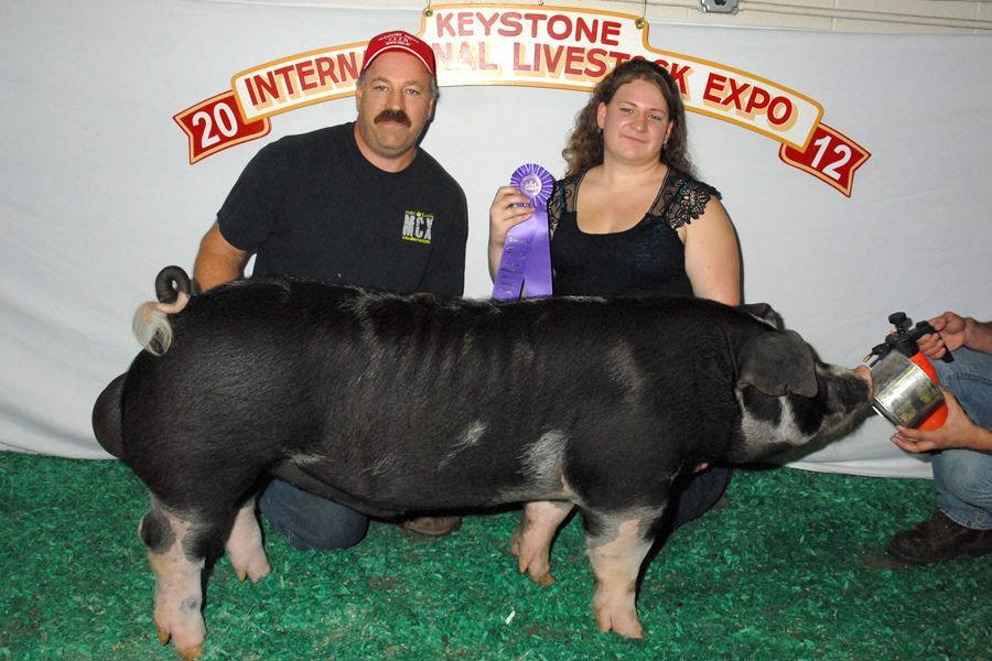 Superior Spot Boar and Chester White Gilt top KILE Swine Breeding Show