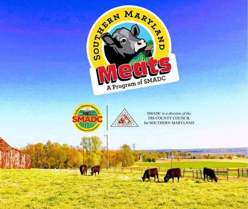 Watson-Hampton-Meat-2.jpg