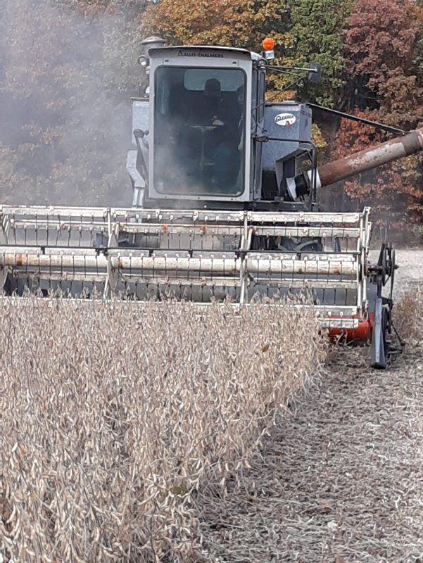 LF20210501-Grain-Prices-2.jpg