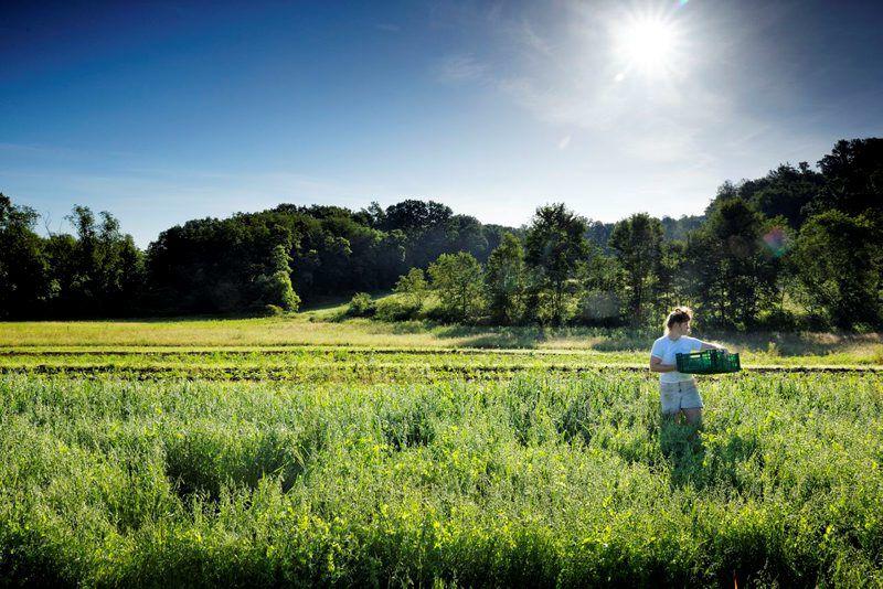 LF20190817-Young-Farmers-2.jpg