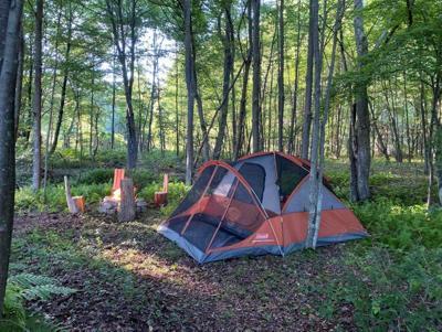 WatsonHampton-Camp-5.jpg