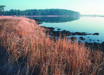 Chesapeake Bay, USDA photo, creative commons, flickr https://flic.kr/p/nGtrxc