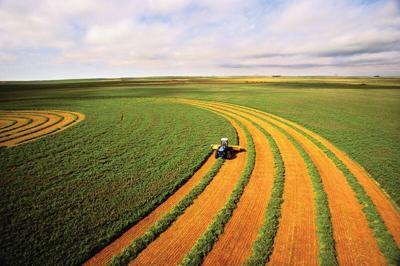 Farm-field.tif