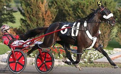 Harness racing: Wiggle It Jiggleit favored in Meadowlands Pace