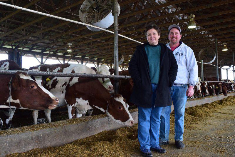 Conebella Farm Cheese