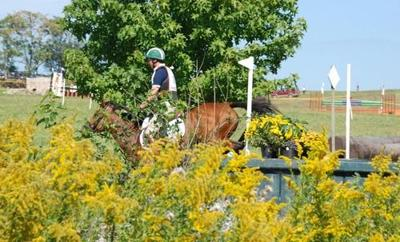Eventing: Olympians to compete at Plantation Field this weekend