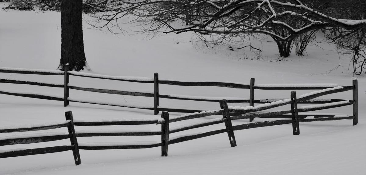 snow 8