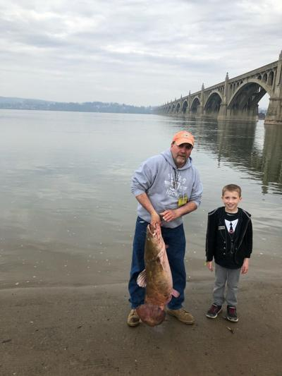 Record-setting catfish reeled in on Susquehanna River