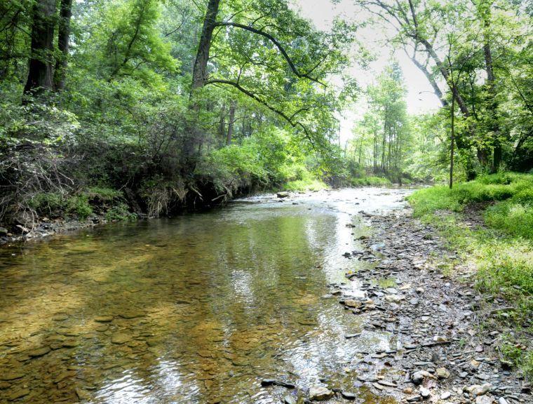 Fishing Creek Nature Preserve