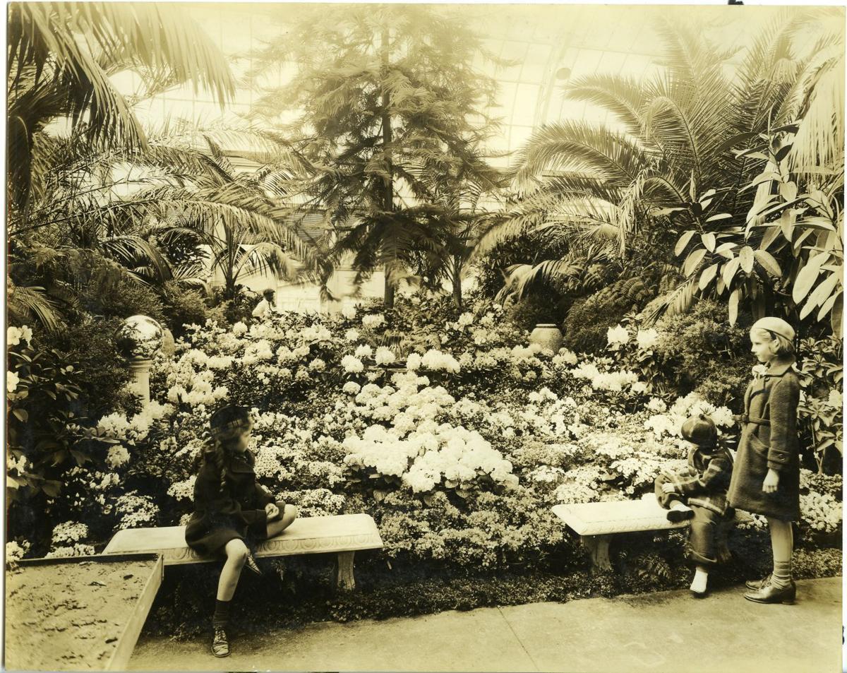 Dorable Hershey Gardens Composition - Brown Nature Garden ...