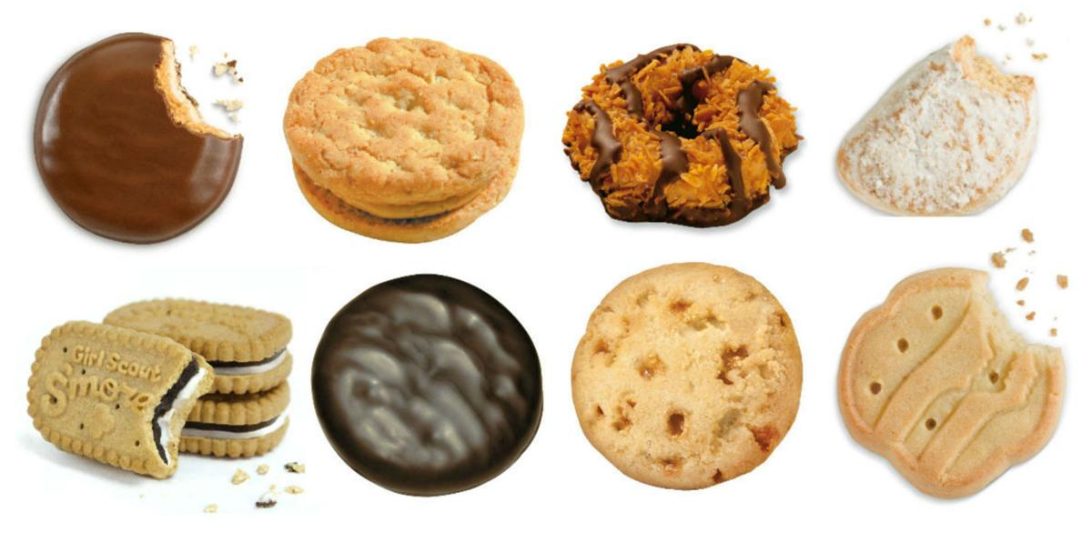 meet the 2017 girl scout cookies including new s mores