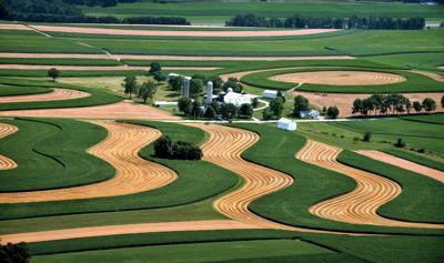 Aerial farmland photo