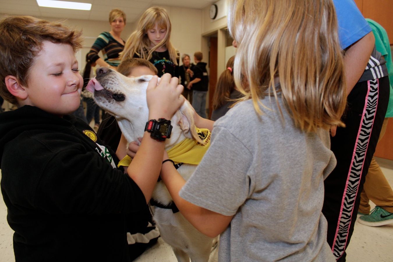 Kappy, the therapy dog, kisses Ben Pietsch at Riverview Elementary.