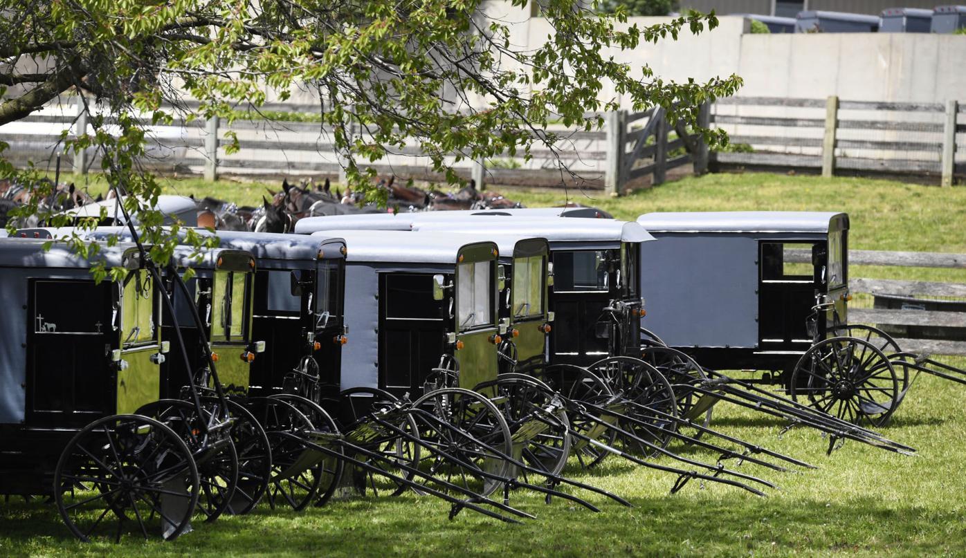 Amish Wedding Crowd