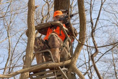 Sunday hunting ban headed to court