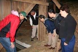 Farm accidents: How Lancaster doctors' curiosity saved Amish kids | Local  News | lancasteronline.com