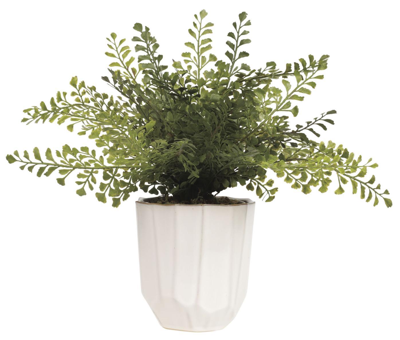 Renew Vase