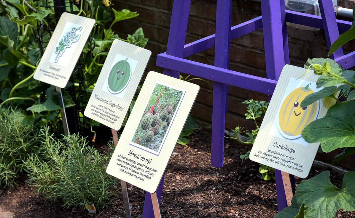 Hershey's Aro House es un nuevo enfoque en la sostenibilidad, pequeño espacio de jardinería - LancasterOnline 1