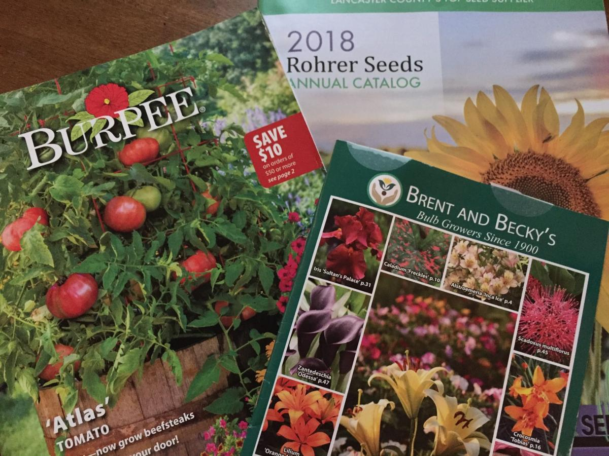 You Voted Here Are Your Favorite Seed And Garden Catalogs Of 2018 Home Garden