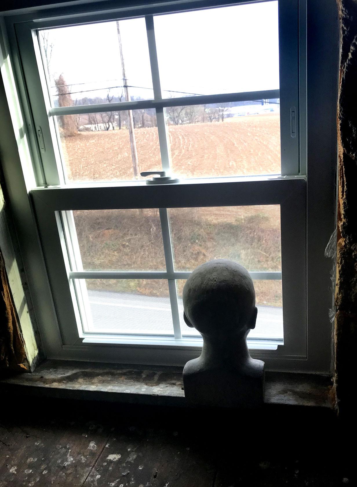 A head in the window