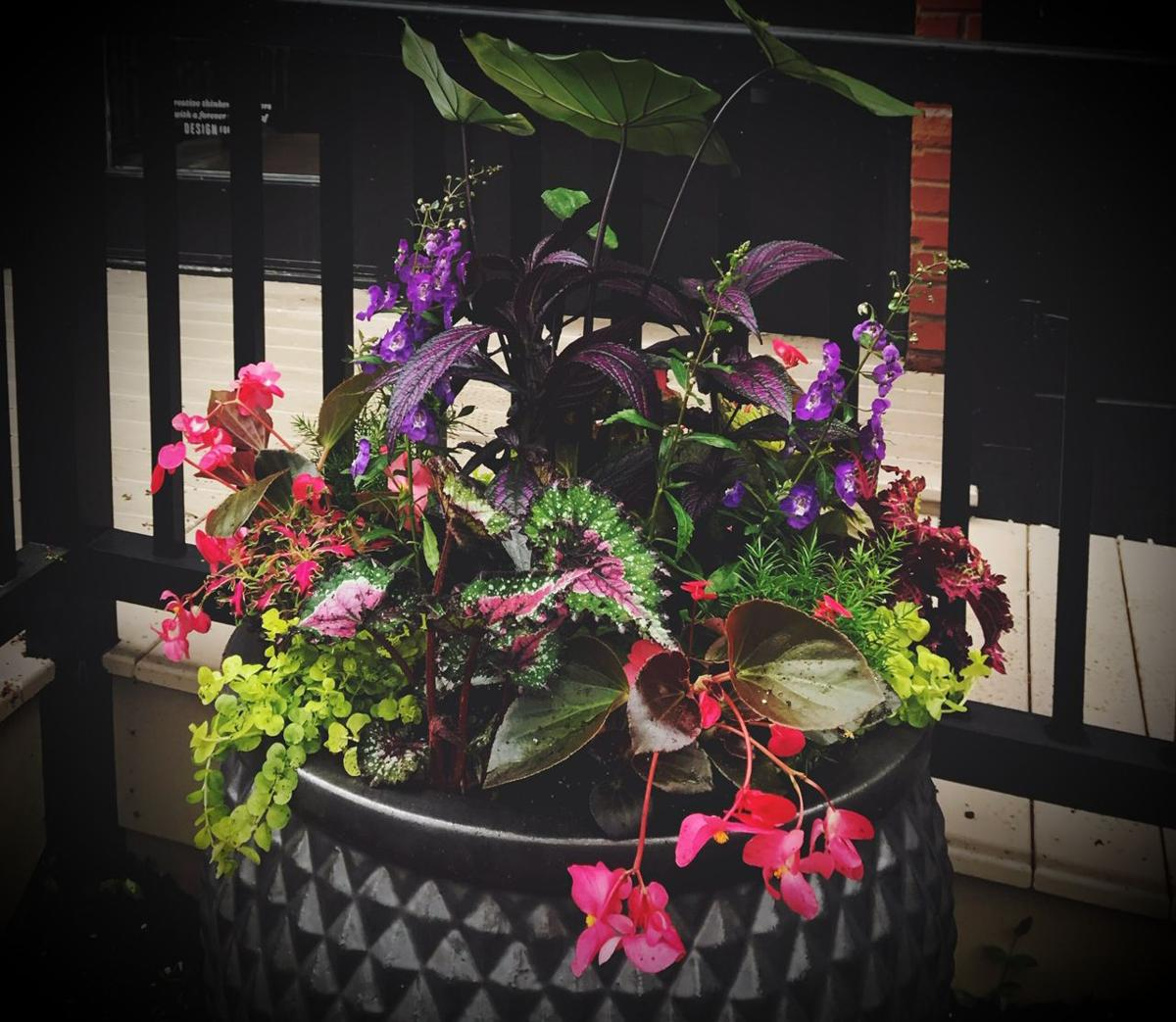 22 tips to take your container garden from Grimm to Narnia | Home + Zinnia Garden Pot Designs Html on