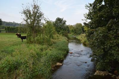 Farmers' efforts to help environment benefit their Lancaster County farms
