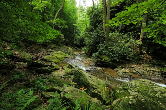 Tucquan Glen Nature Preserve