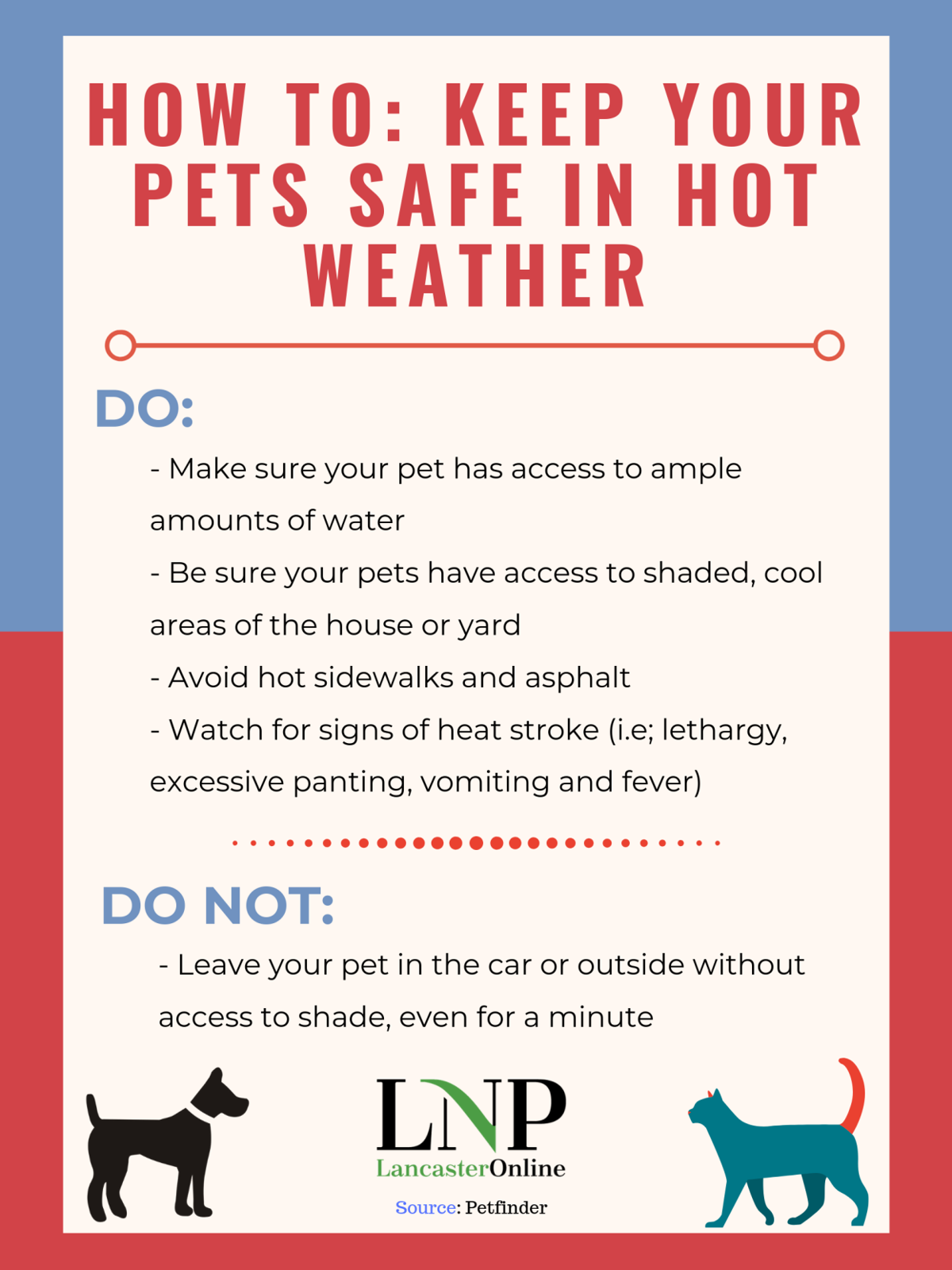 Keeping pets safe in heat [infographic]