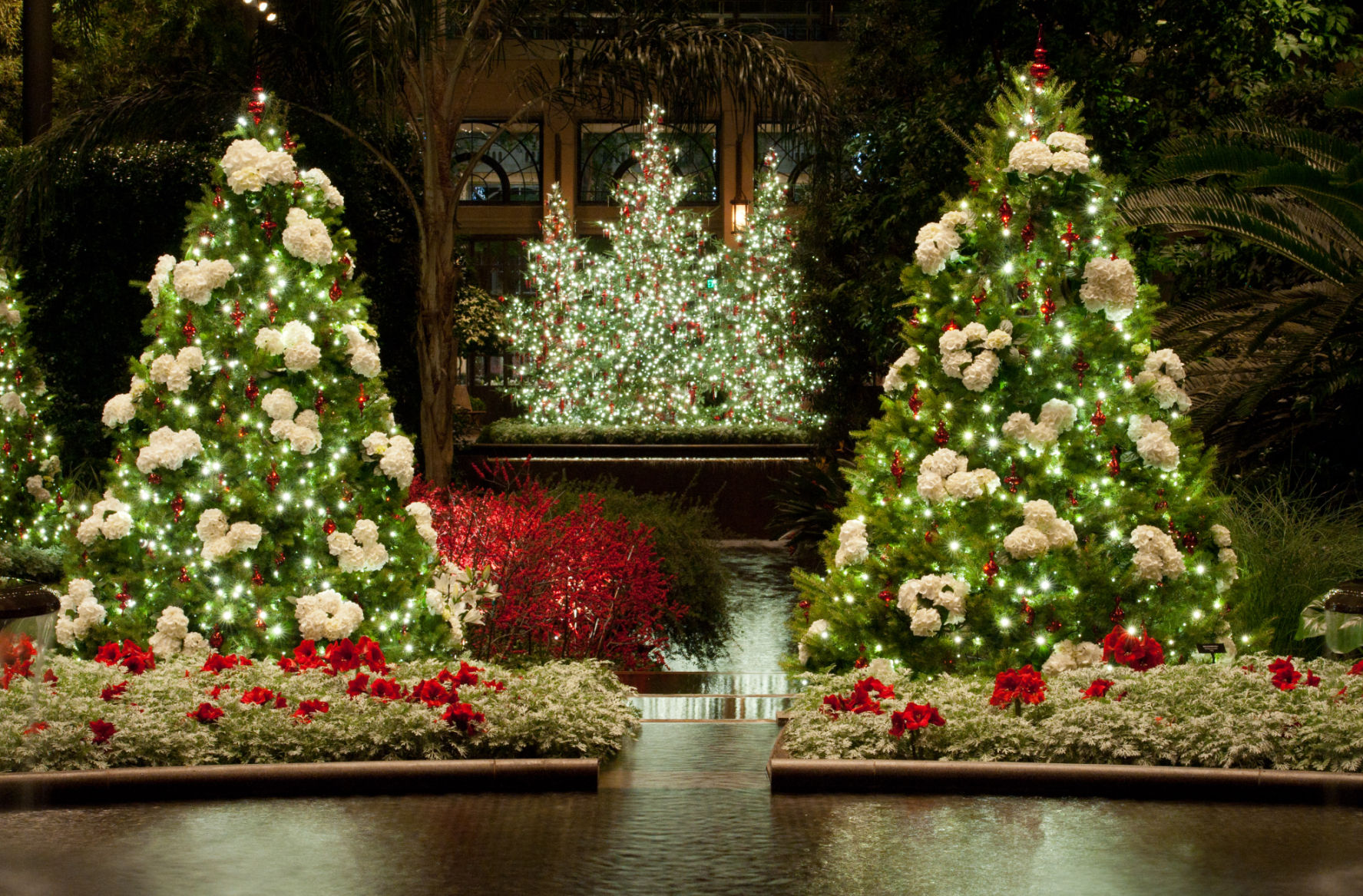 Longwood Gardens opens its popular Christmas display on ...