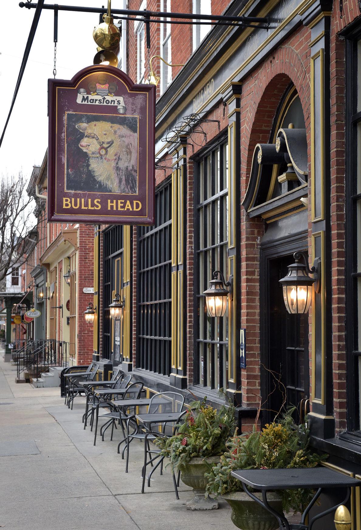 Bulls Head 3