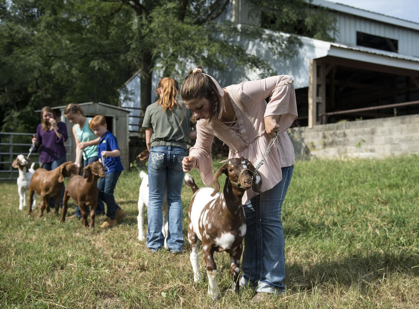 Youth with Farm Show Animals