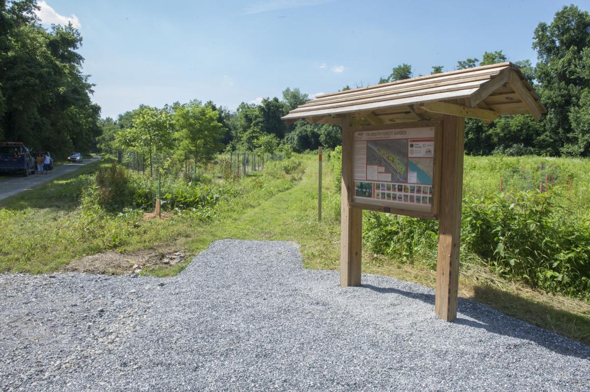 Conservancy Trail