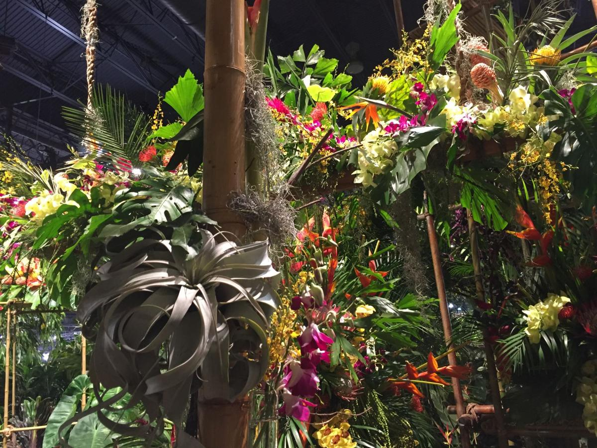March garden calendar: Where to find garden shows and talks in the ...