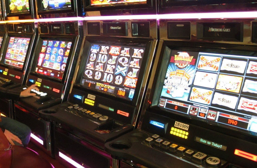 Wv gambling license suncoast casino u0026 entertainment world