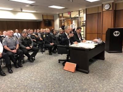 Stedman at budget hearing
