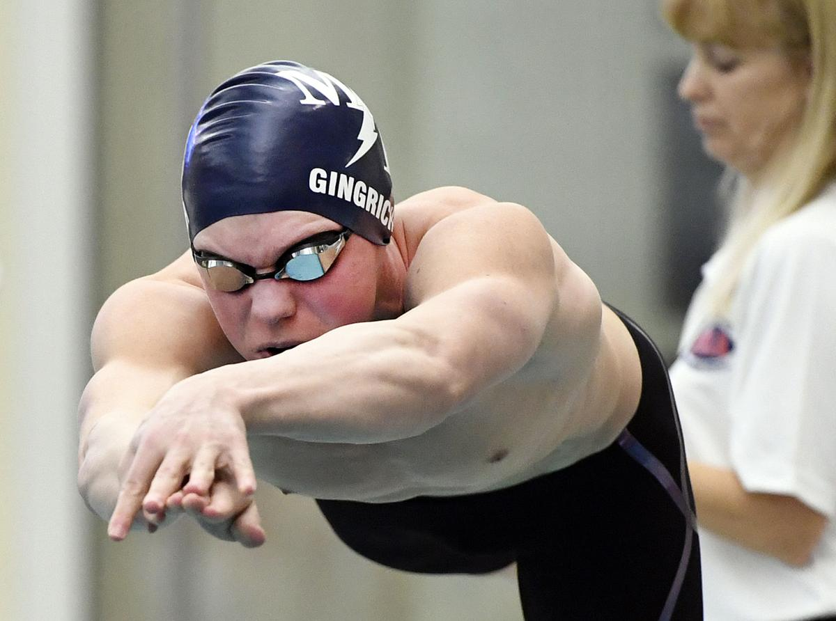 PIAA 3A Swimming & Diving Championships-Day2
