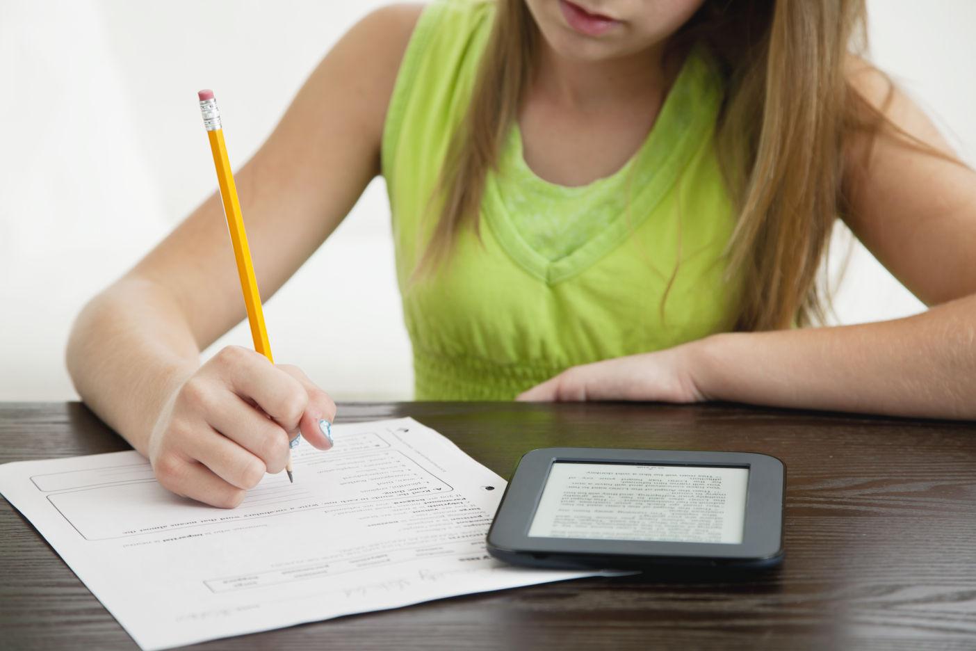 literature homework help